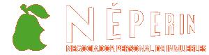 logo-neperin-inmobiliaria-yuncos